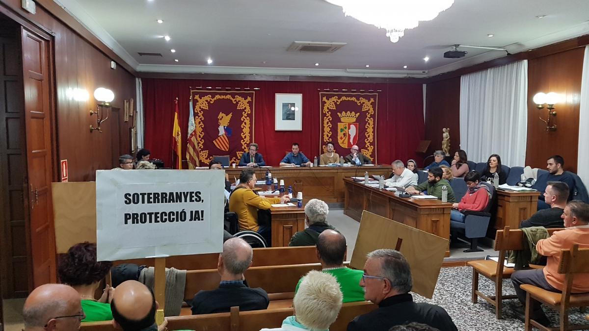 Vinaròs ratifica con polémica la malla en un árbol contra los estorninos
