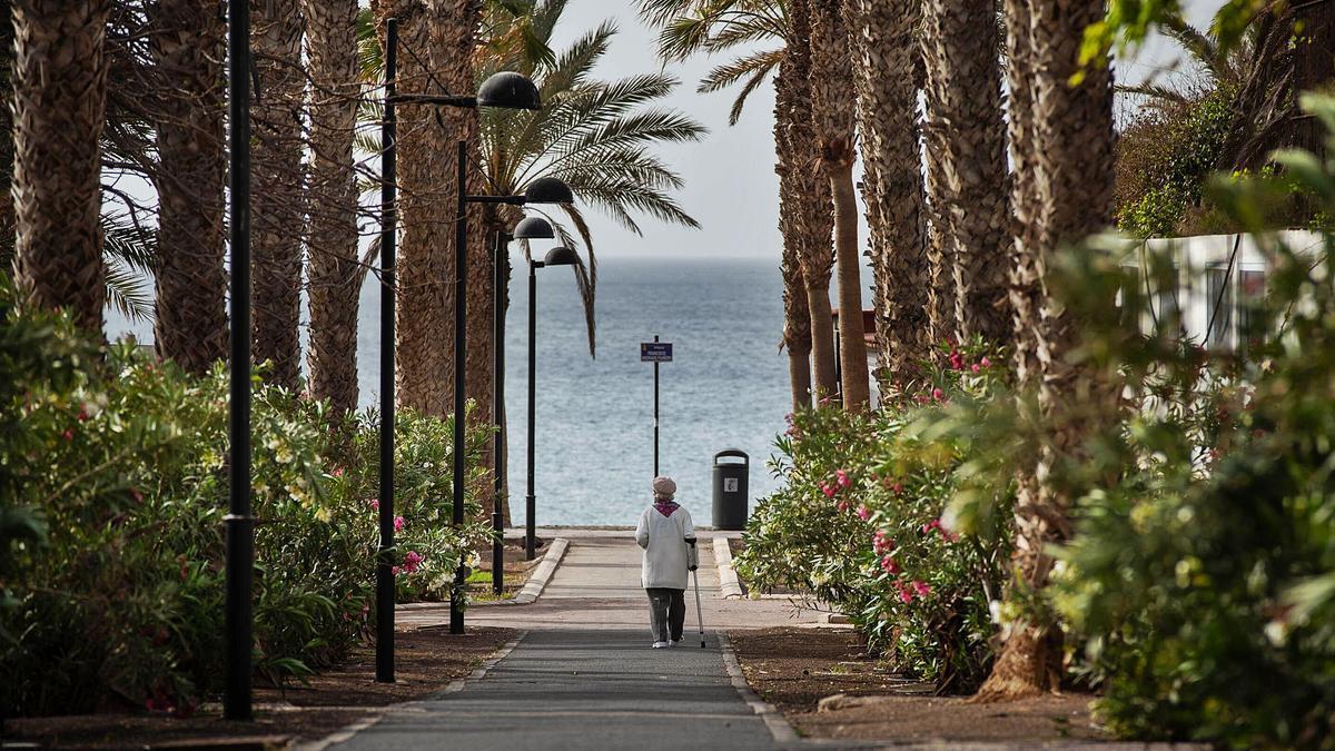 Una mujer y un perro disfrutan de un paseo junto al mar