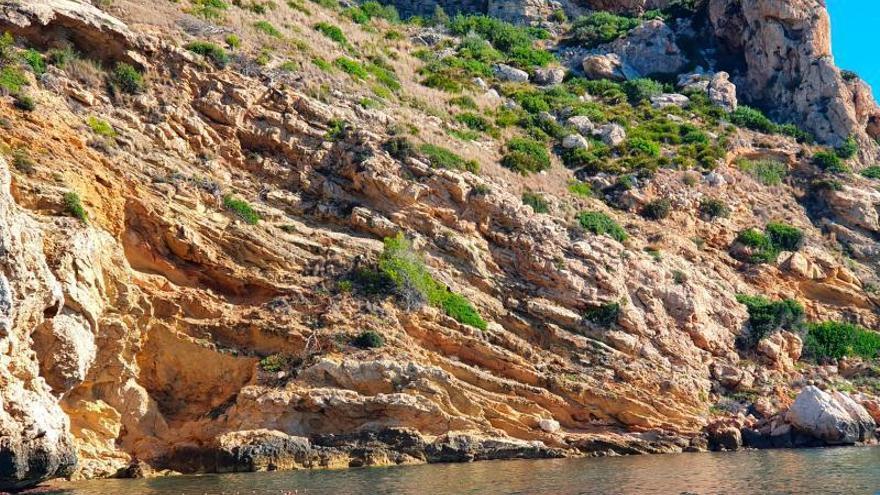 Ecologistas piden prohibir la pesca en la reserva del Cap de Sant Antoni