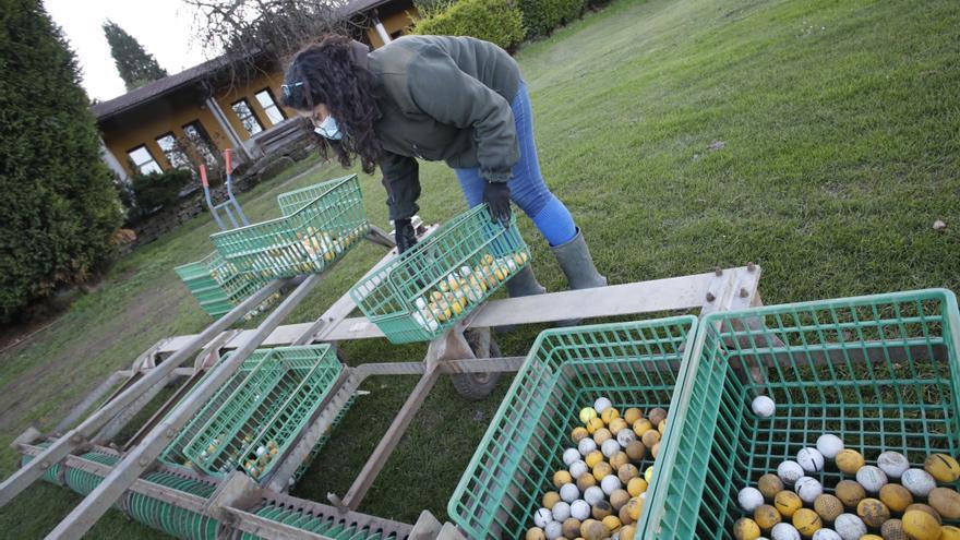 Usuarios y empleados en el campo de golf de El Tragamón
