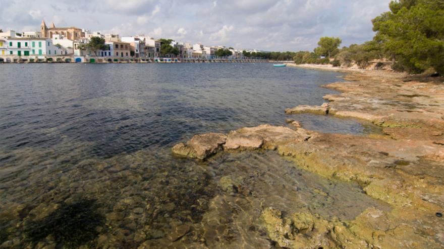 El GOB lamenta la falta de objetivos de conservación en el plan de gestión natural de la costa del Llevant