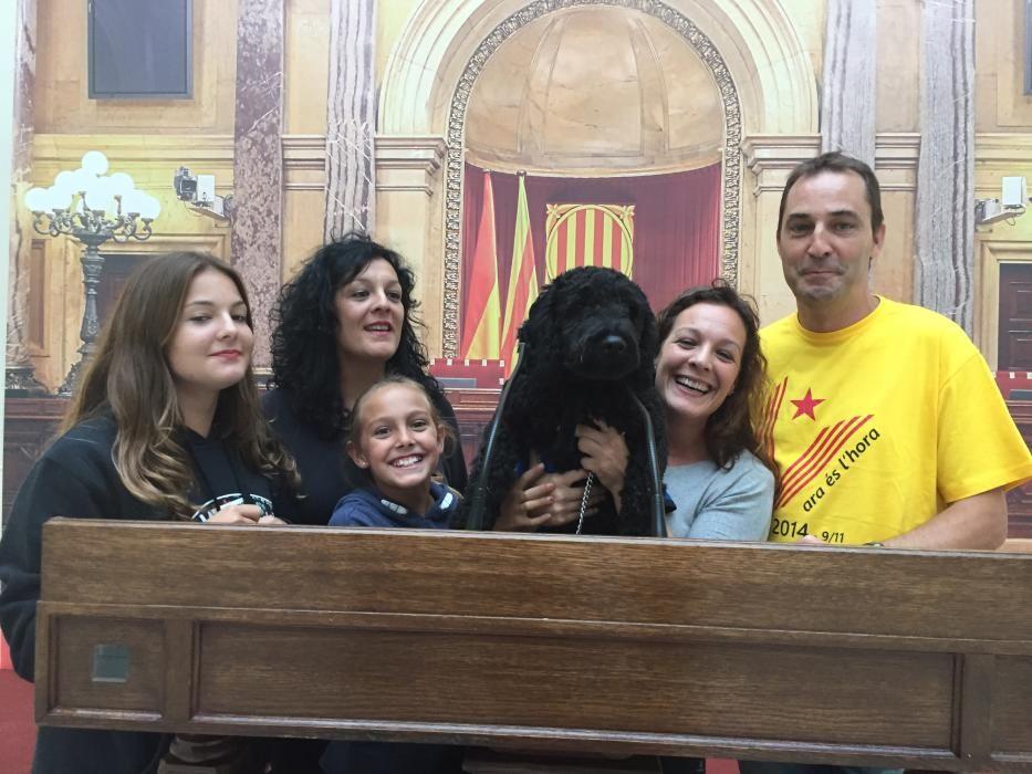 """Mayk és un gos en formació per a assistència de persones discapacitades i va ser el primer gos que va entrar en el parlament de Catalunya el 11 de setembre de 2015.  Mayk """"ens parla, des d'aquests micròfons, de la nova visió dels gossos a la societat."""