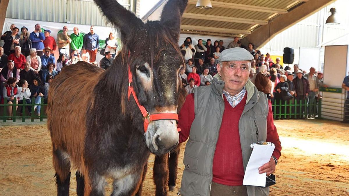Demetrio Fernández, de Gallegos del Río, uno de los ganaderos históricos, con un burro en San Vitero. | Ch. S,