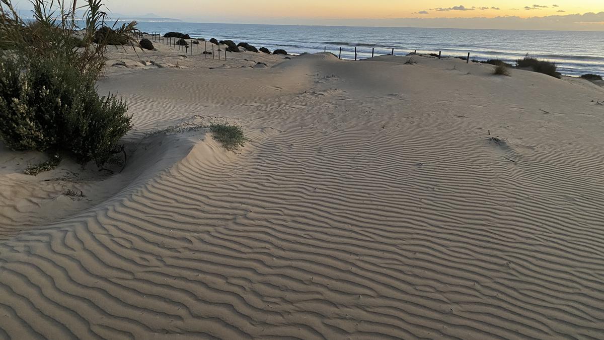 Guardamar del Segura beach.