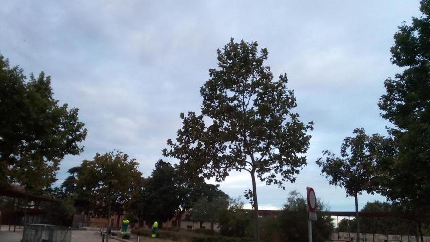 El parque de San Martín de la capital, esta mañana.