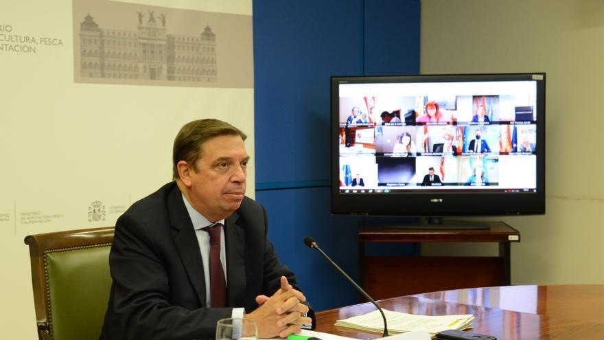 El Ministerio llevará a consulta el Plan Estratégico Nacional de la PAC en noviembre