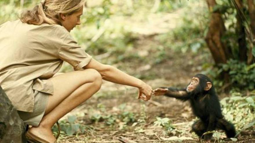 Fotogalería de las mejores imágenes de National Geographic