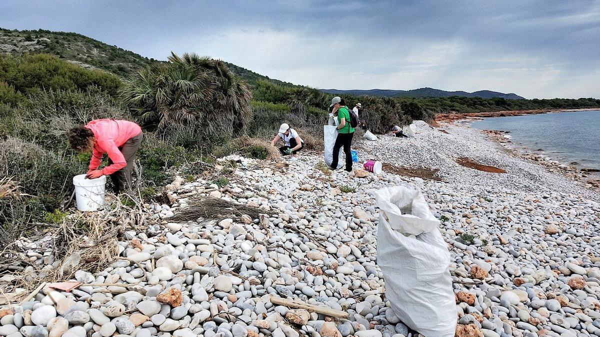 Voluntarios de Ecologistas en Acción recogiendo residuos en la playa de la Basseta.