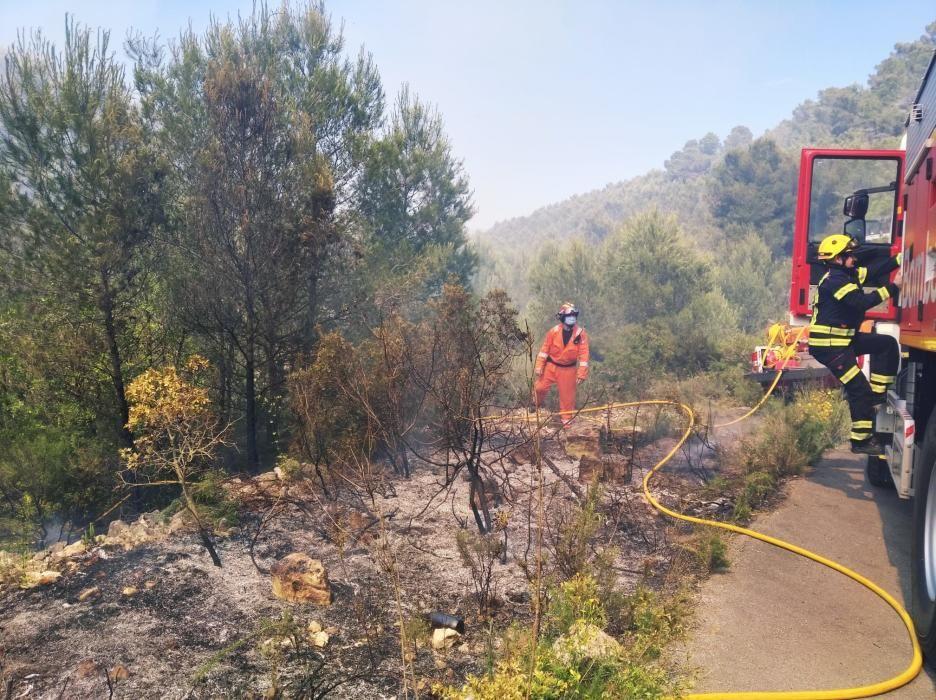 Los Bomberos apagan un fuego forestal en Xàbia.