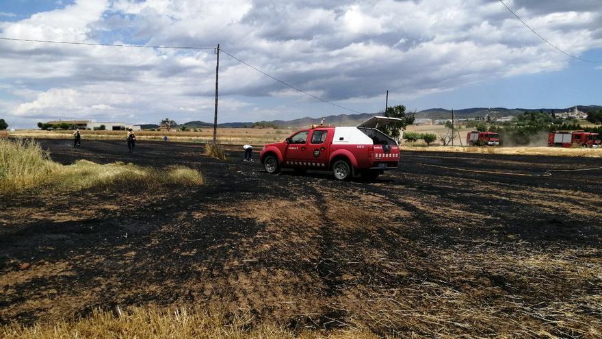 Un incendi agrícola crema 1,4 hectàrees de rostolls a Cassà