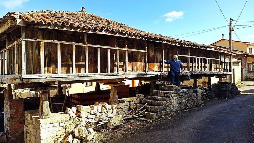 La panera de Santianes de Molenes (Grado) desmiente su grandeza: no es la mayor del mundo aunque lo parezca