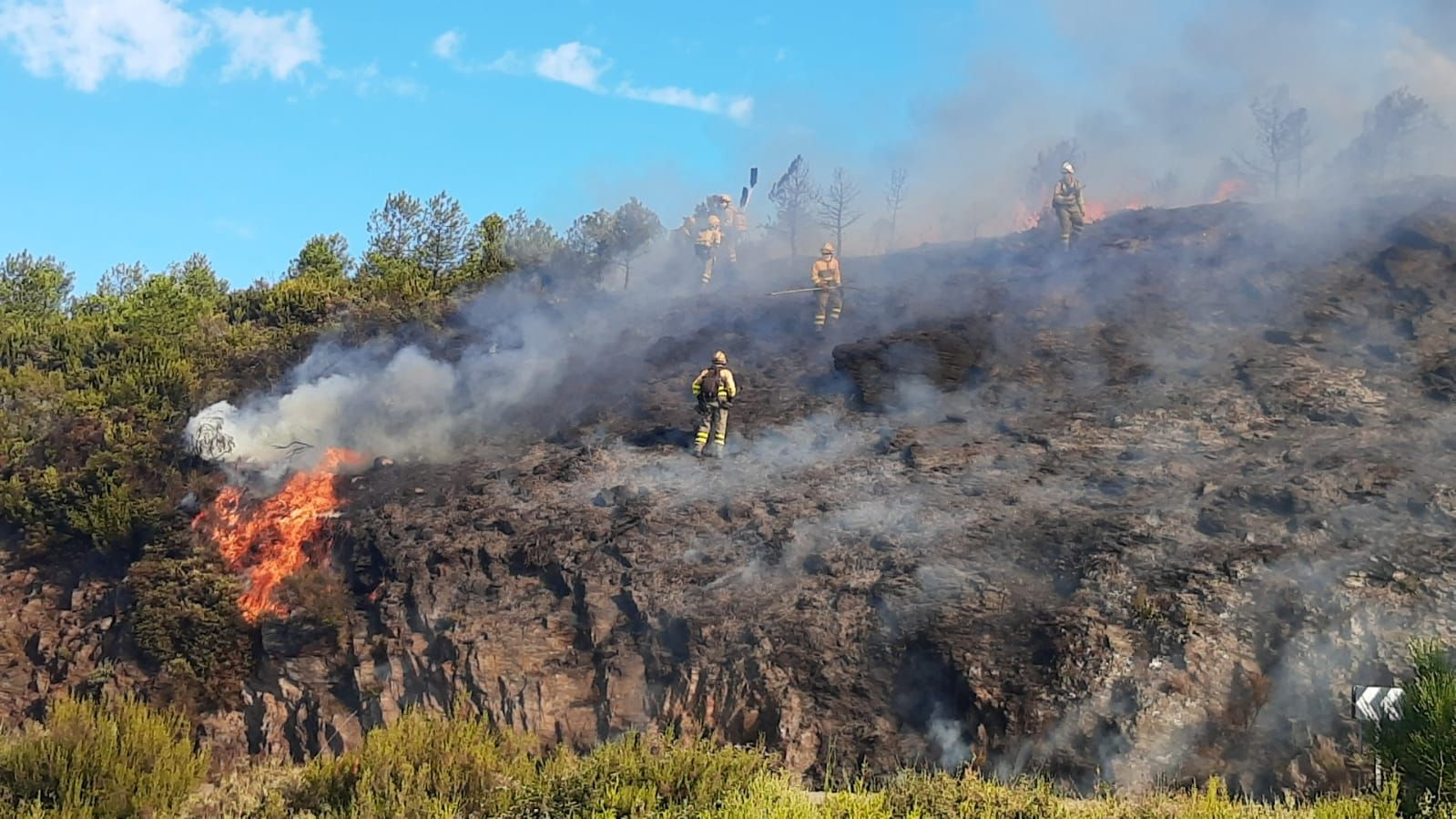 GALERÍA | El incendio en Pedralba de la Pradería, en imágenes