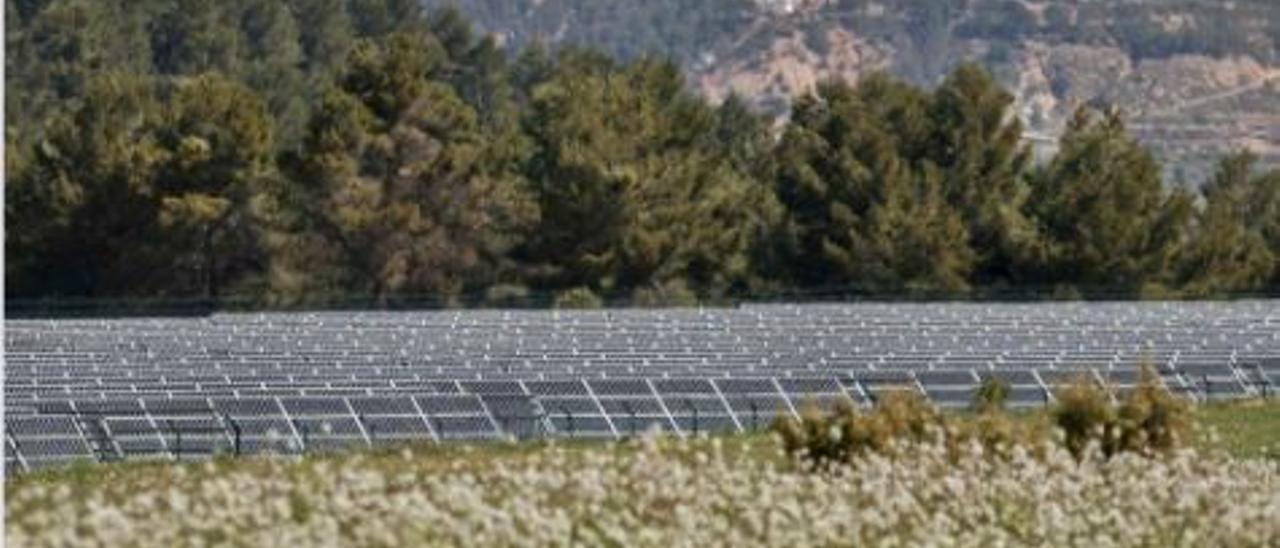 Energía verde: ¿oportunidad o problema?