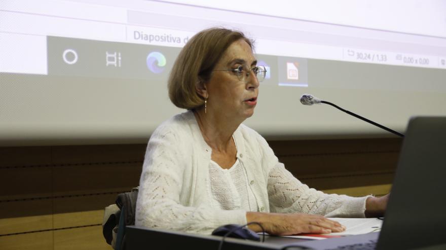 """El Museo Casa Natal """"nace de la sociedad"""", afirma su directora"""