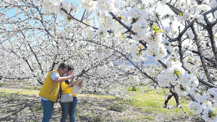 El turismo ve ya complicado salvar esta primavera