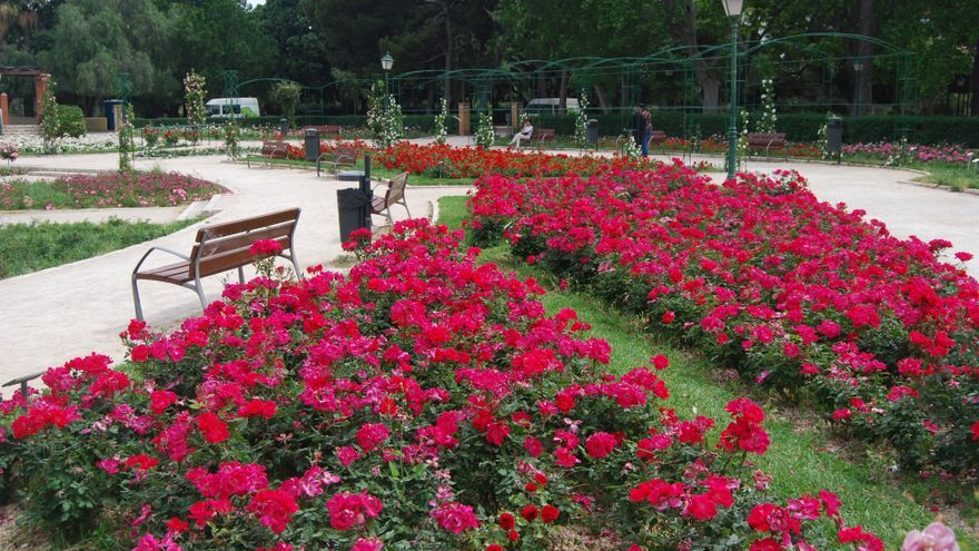 La rosaleda de Viveros cambiará de nombre por la ley de Memoria Histórica