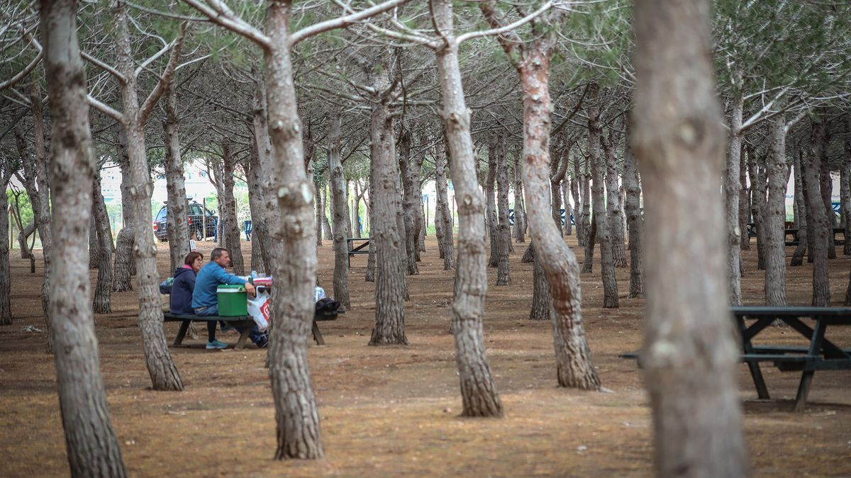 Imagen del parque Lo Albentosa junto al parque natural de las lagunas de Torrevieja y La Mata
