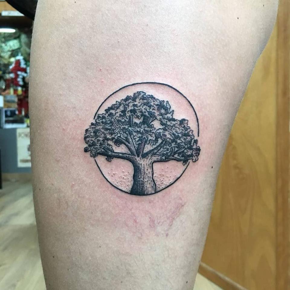 El Olivo de Vigo. // Nortes (Tatuajes Costa Oeste)