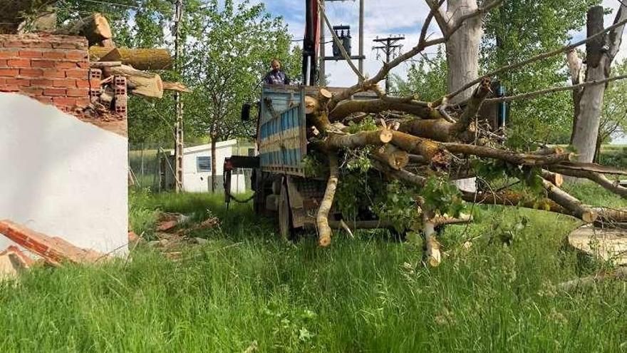 Un camión con las ramas y restos de los árboles arrancados por el viento.
