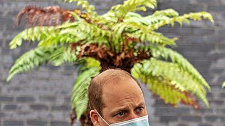 El príncipe Guillermo ocultó que dio positivo en covid-19 en el mes de abril