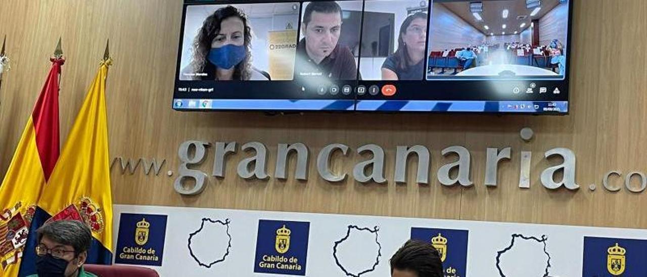 La consejera reunida por video conferencia con los comercializadores.     C.G.C.
