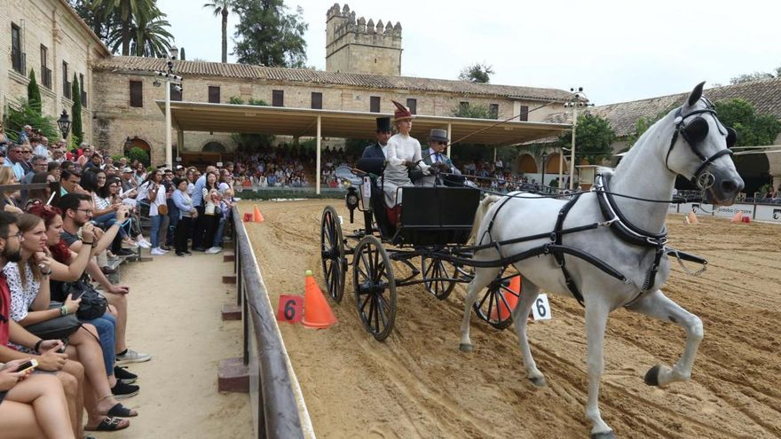 El concurso internacional de atalaje abre en Córdoba la competición a nivel nacional