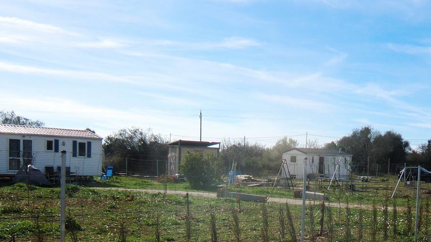 Ordenan el derribo de hasta 37 construcciones ilegales en una finca parcelada de Sencelles