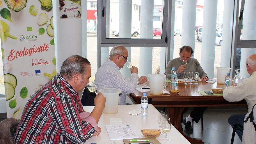 La superficie de uva de vinificación ecológica crece un 36% en la Comunidad