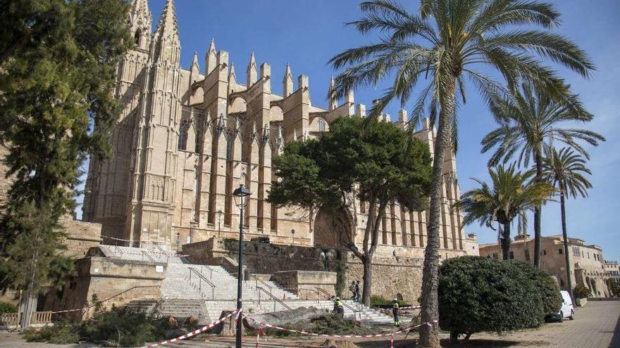 Palma de Mallorca fällt vom Sturm beschädigte Bäume vor Kathedrale