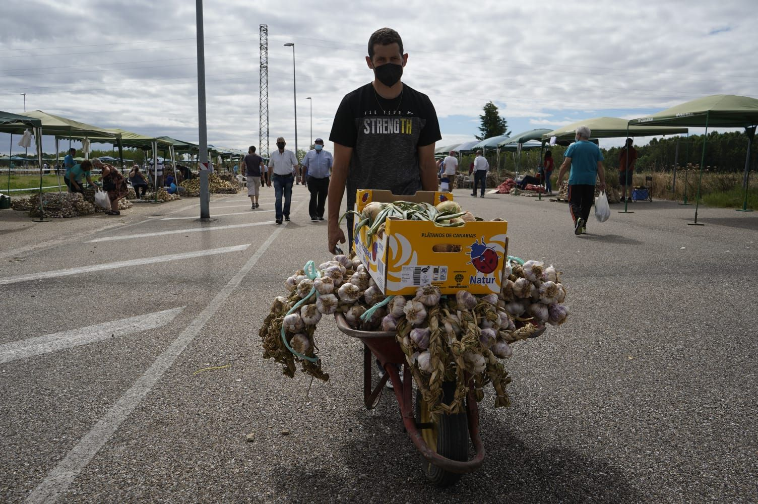 GALERÍA   La Feria del Ajo triunfa en Zamora: buena producción y colas para llegar a Ifeza