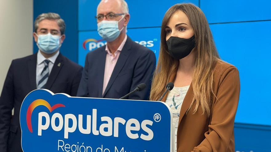 """El PP pide la dimisión de Mario Gómez por """"usar las instituciones"""" para investigar los contratos de iluminación"""
