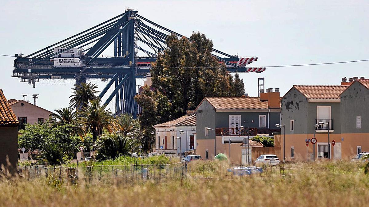 Imagen de las grúas de la actual terminal de MSC vistas desde el barrio de Natzaret, ayer. | EFE/M. BRUQUE