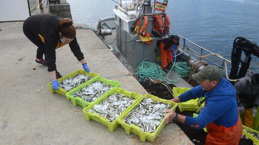 El consumo de pescado aumenta casi un 5% en marzo