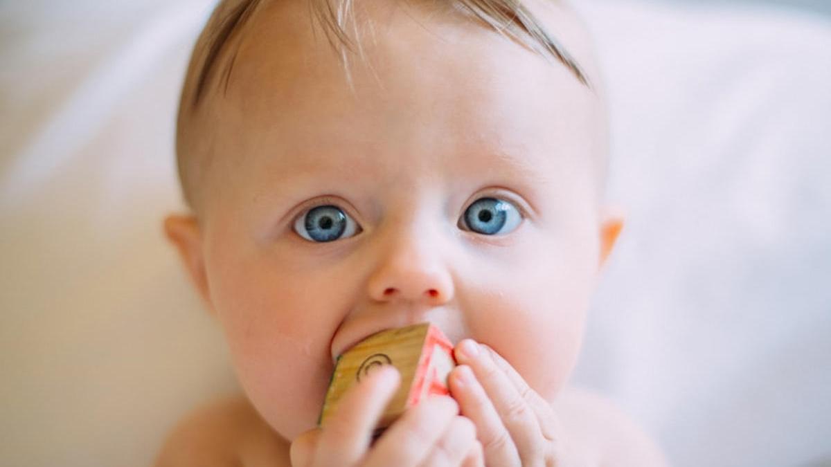 Claves para el correcto desarrollo de tu hijo.