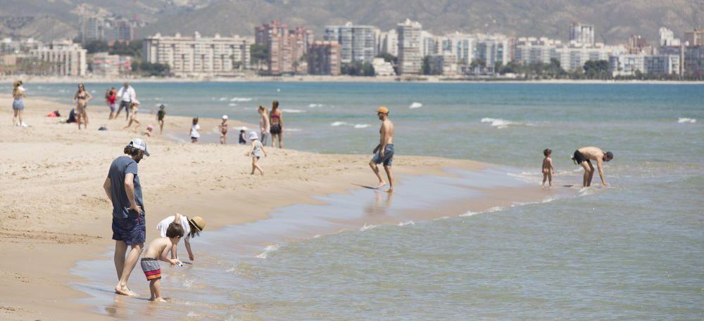 La playa de Muchavista, en El Campello, con bandera azul.