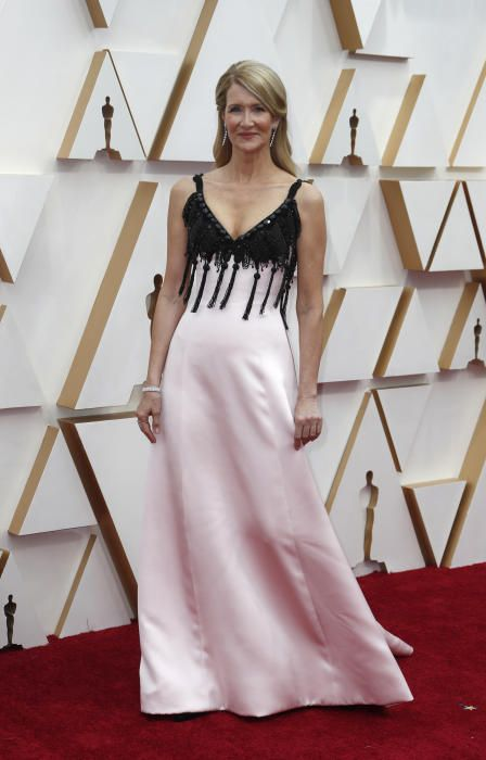 92nd Academy Awards - Oscars Arrivals - Hollywood