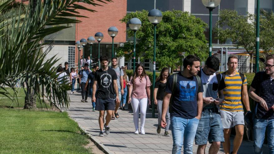 Un estudio sitúa a la UMH entre las mejores universidades