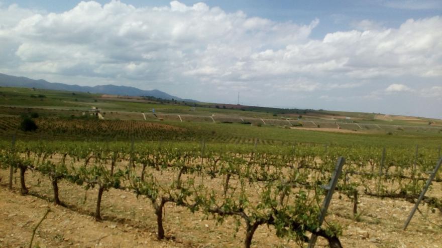 Las tormentas no tienen piedad y afectan a todo el territorio aragonés