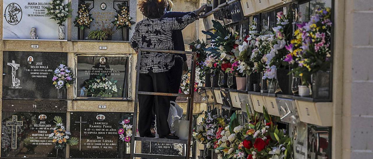 Arreglos en el cementerio de Elche e imagen de archivo de Halloween en Alicante.   A. AMORÓS/RAFA ARJONES
