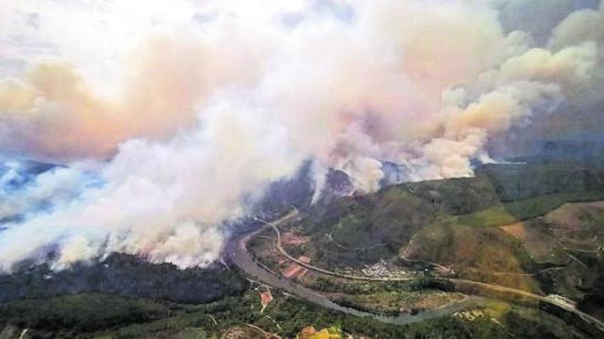 Incendio Ribeira Sacra: El fuego arrasa 900 hectáreas en Ribas de Sil y avanza sin control