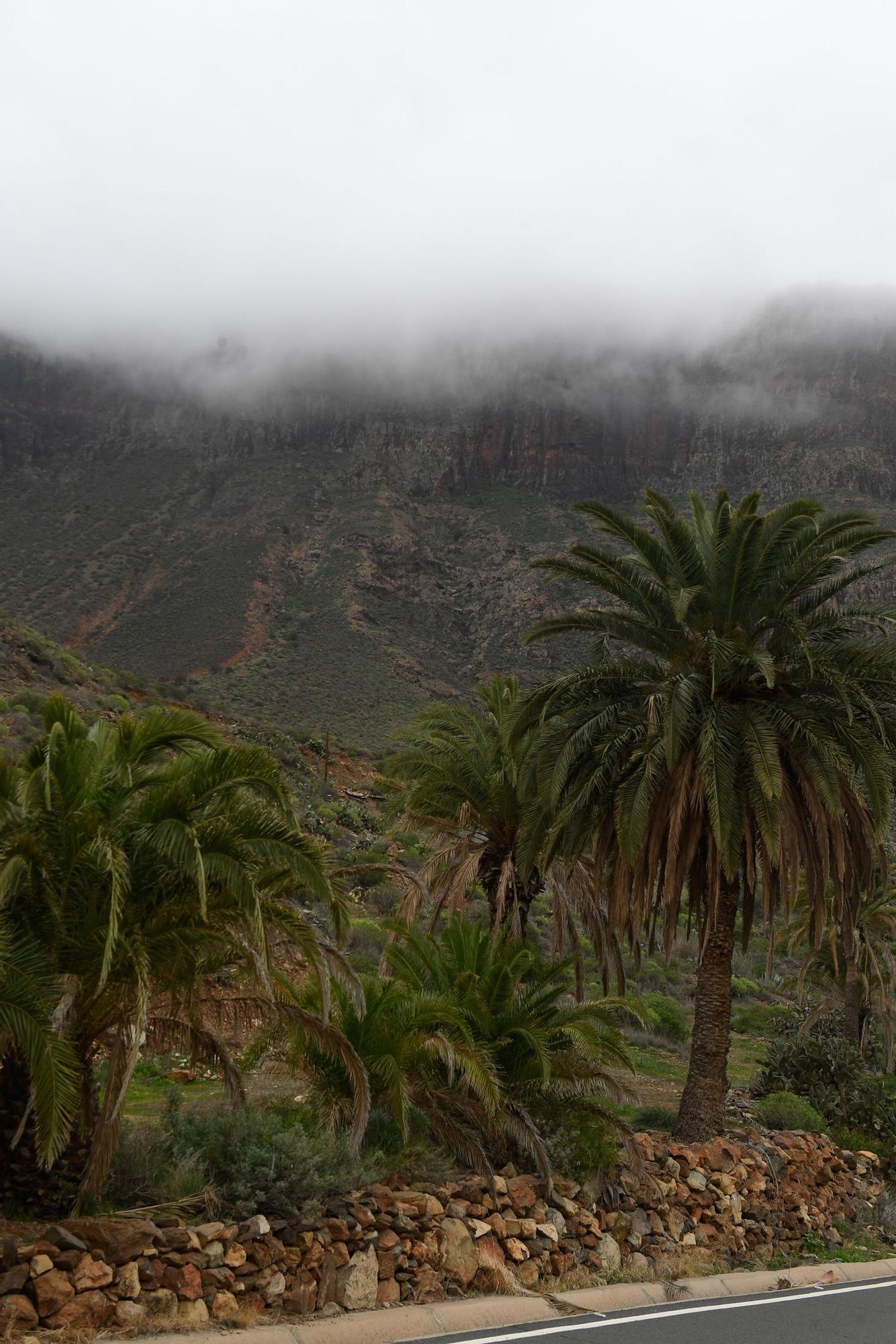 Tiempo en Gran Canaria (04/01/2021)
