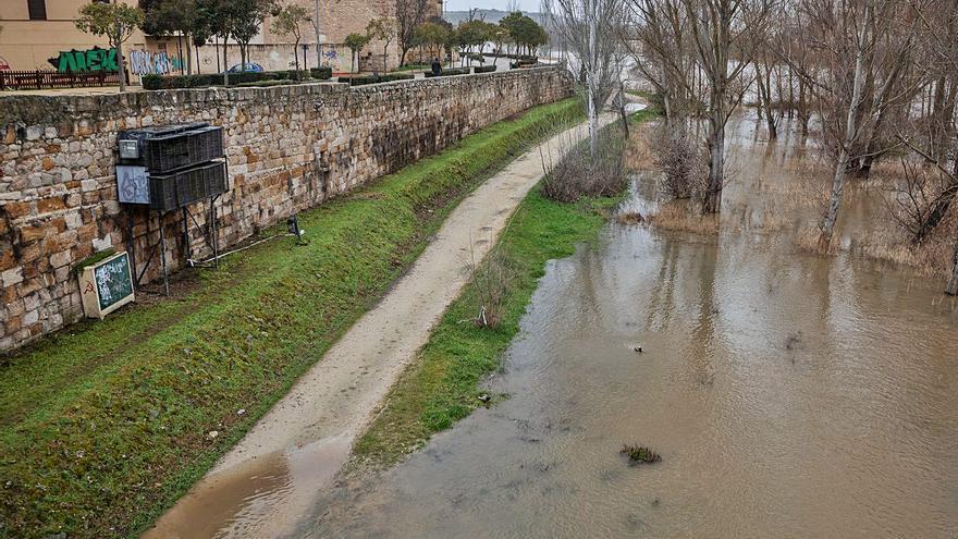Zamora contempla la fuerza del Duero