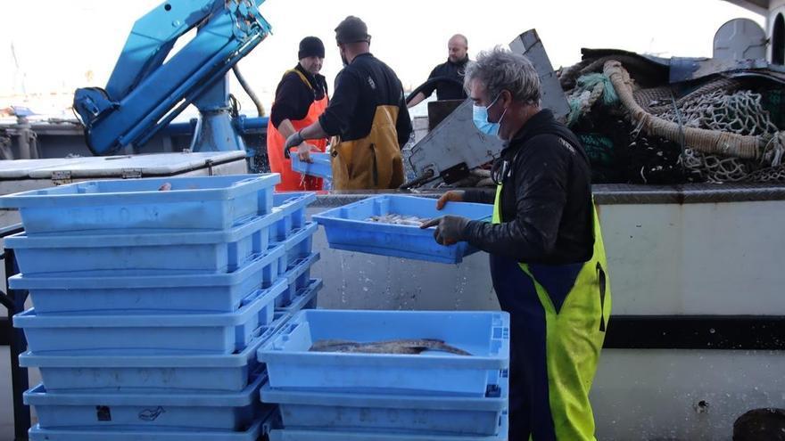 El sector pesquero, uno de los de más arraigo en la historia de Castellón, vive tiempos difíciles