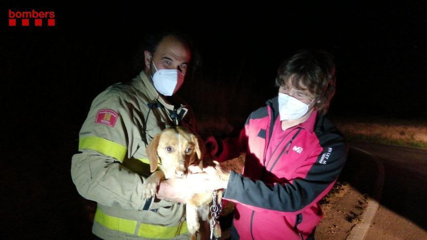 Troben un home de 69 anys desaparegut durant la nit a Ordis gràcies als lladrucs dels seus gossos