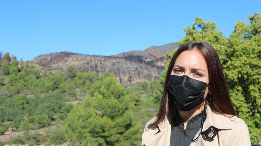 Luces y sombras del incendio de Azuébar: primeros brotes y sin ayudas