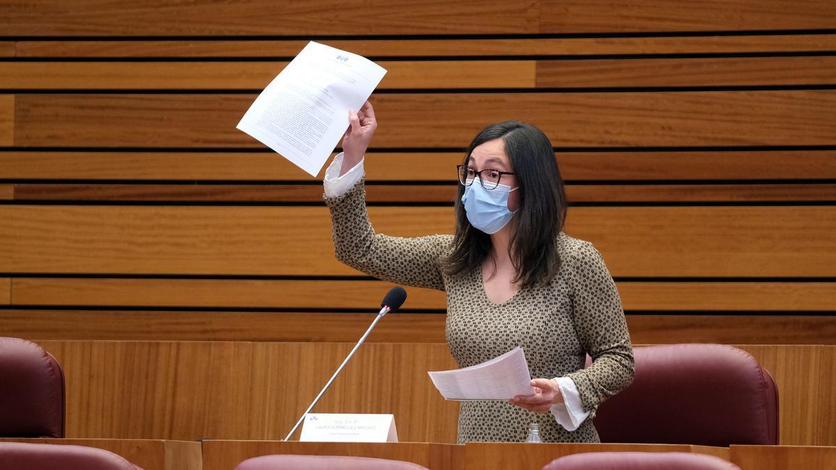 La procuradora de Podemos, Laura Domínguez, durante su intervención en las Cortes.