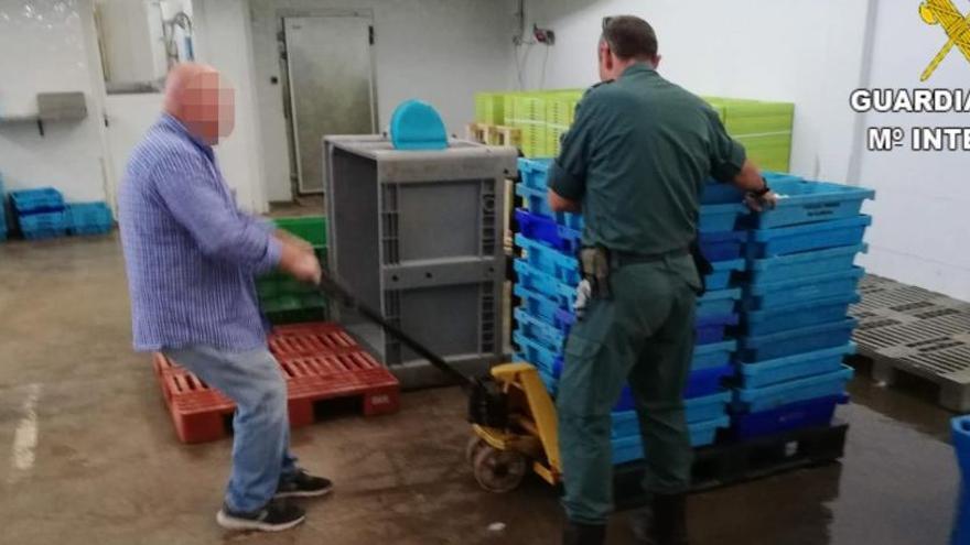 La Guardia Civil incauta más de una tonelada de pescado ilegal en Calp y Cox