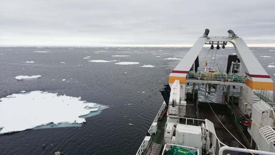"""La guerra del bacalo se recrudece: la UE amenaza a Noruega """"con todos los medios necesarios"""" tras el recorte de cuotas"""