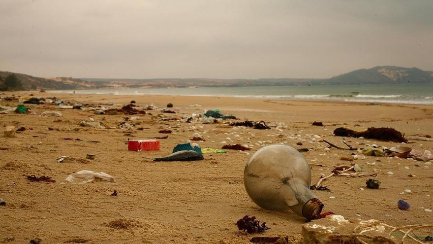 Investiguen el risc de malalties derivades dels plàstics dels oceans