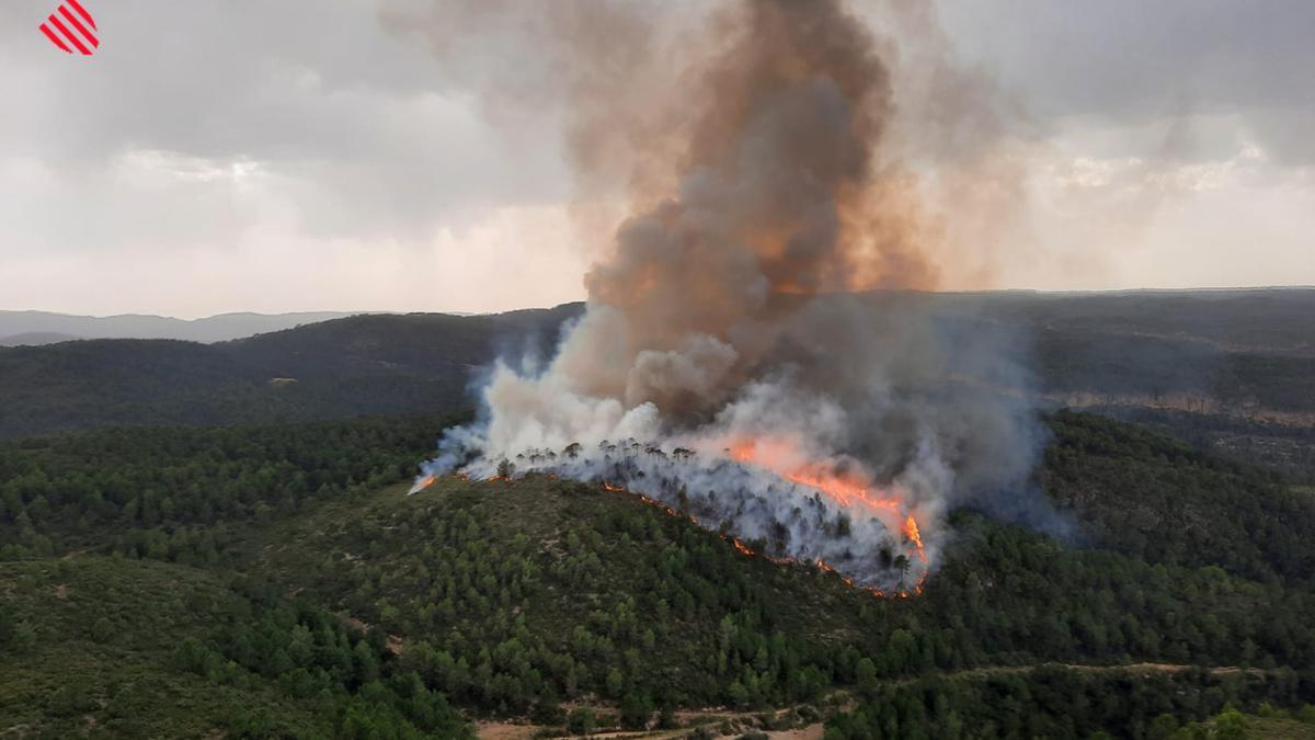 Imagen del incendio declarado esta tarde en Bicorp